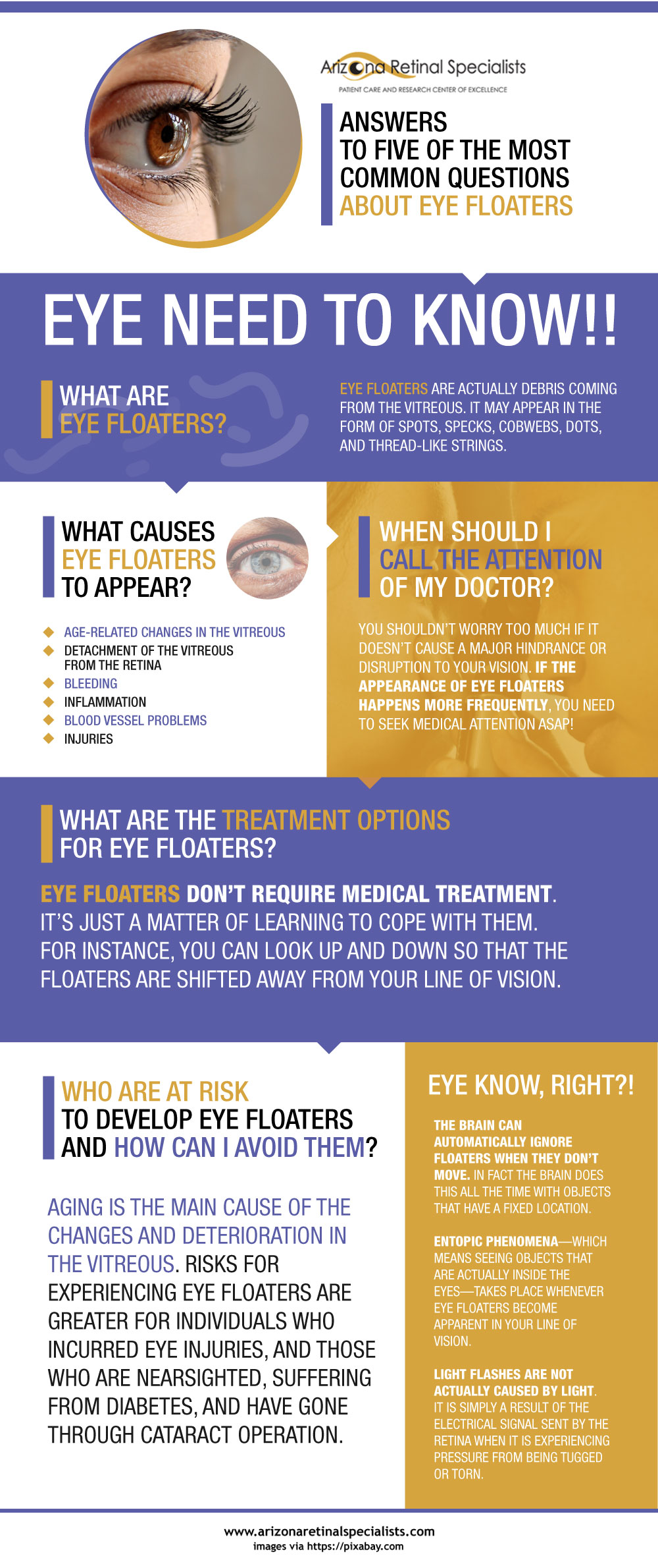 Answers to Five of the Most Common Questions about Eye Floaters infographics