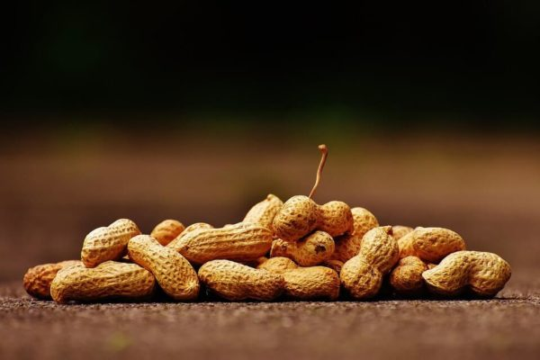 nuts for better eyesight